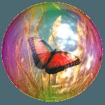 Being in the Vortex of Wellbeing