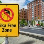 Infographic – How is Zika Infection Prevented?