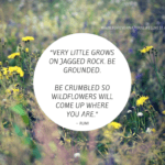 The Good Ground … Be Grounded, Be Crumbled