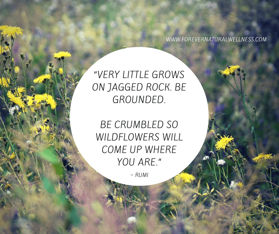 be-crumbled-so-wildflower-will-grow